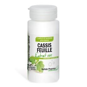 Cassis Feuille 90 gélules Dosage Optimal