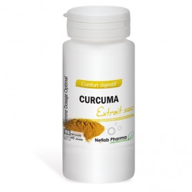 Curcuma 90 gélules Dosage Optimal
