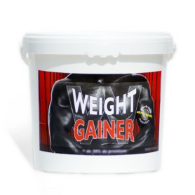 Weight Gainer Chocolat