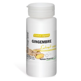 Gingembre Dosage Optimal 90 gélules