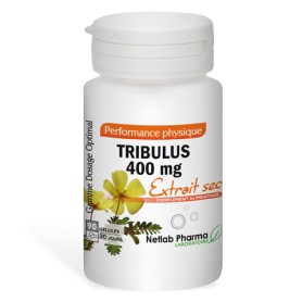 Tribulus 400 mg 90 gélules Dosage Optimal